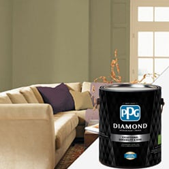 PPG DIAMOND<sup>™</sup>