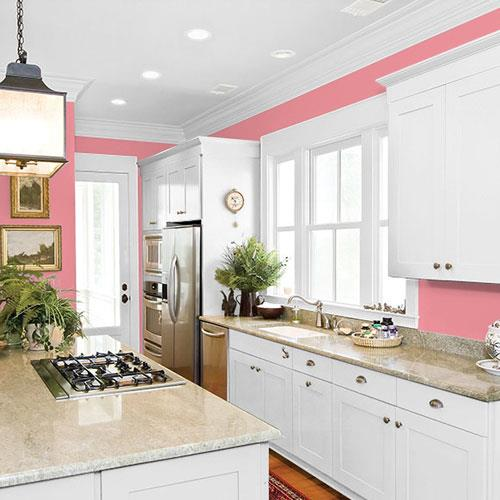 Pink Flambe PPG1186-4