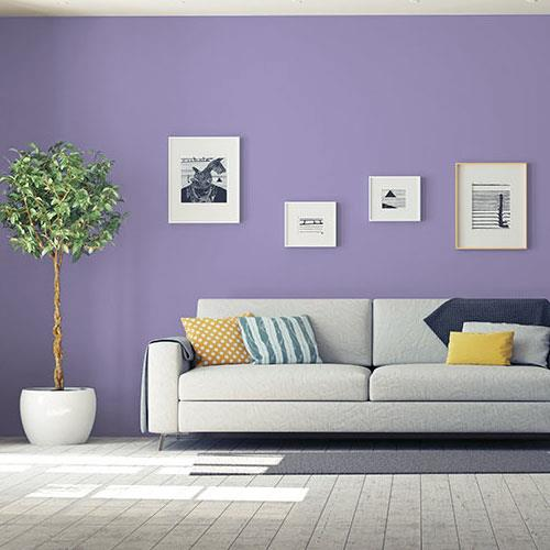 French Violet PPG1175-5
