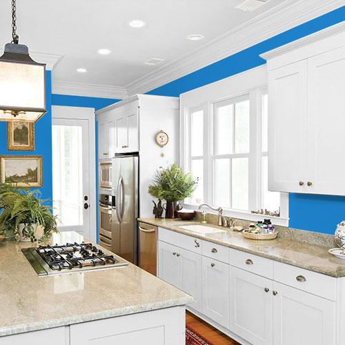 Electric Blue PPG1241-6
