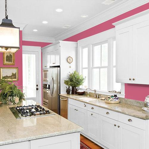 Cherry Pink PPG1183-6