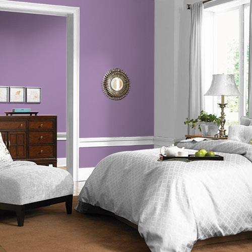 Violet Eclipse PPG1176-5