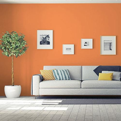 Orange Poppy PPG1196-7