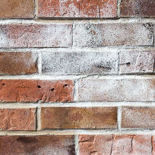 How To Fix Efflorescence On Walls