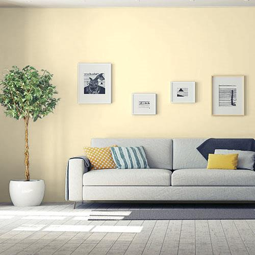 Yellow Acacia Bloom 50YY 83/200