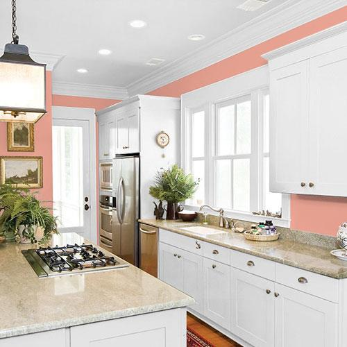 Coral Blush PPG1191-4