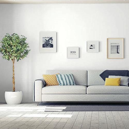 Compre pintura blanca en línea