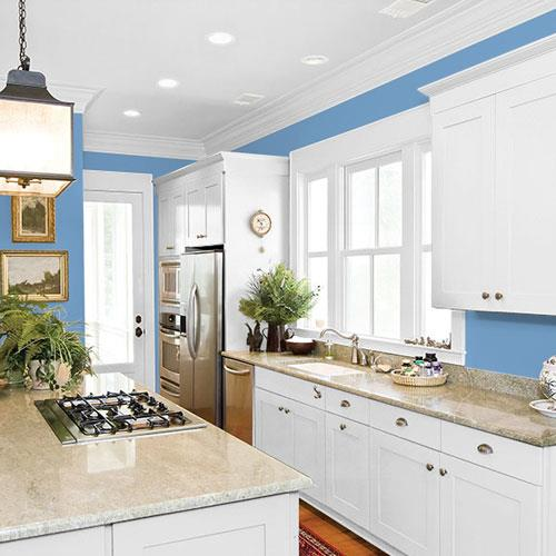 Blue Promise PPG1161-4
