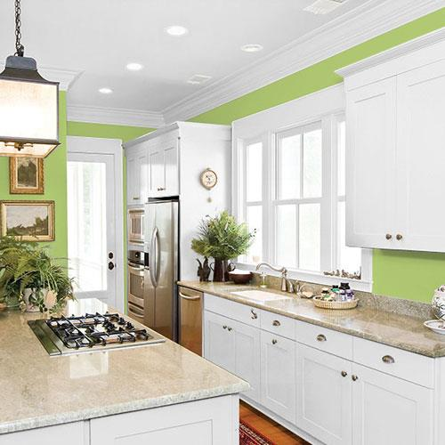 Lime Green PPG1222-5